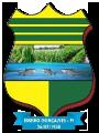 Camara Municipal Ribeiro Gonçalves